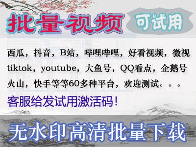 云大朵易语言短视频批量下载软件(高速下载版)